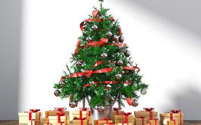 6 conseils pour que votre sapin de Noël reste frais